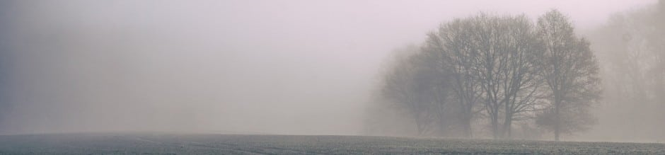 cropped-fog-828779_1920.jpg